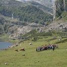 Campamentos de verano inglés y aventura Asturlang