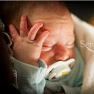 Fotógrafos:  Fotografía artística de bebés.