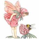 Ilustraciones y cuadros pintados a mano de Beatrix Potter