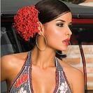 Bikinis para mujeres Supersexys de Protokolo. Con sabor colombiano
