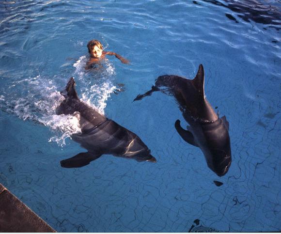 Terapia con delfines para niños con problemas de autismo