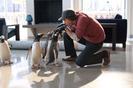 Cine para niños: Los Pingüinos del Sr. Poper