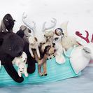Tamar Mogendorff; Muñecas y objetos decorativos vintage