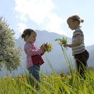Aprender a cuidar la naturaleza en el Parque de Educación Ambiental Arboreto. Madrid