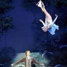"""""""El lago de los cisnes sobre hielo"""" llega al Barcelona Teatre Musica"""