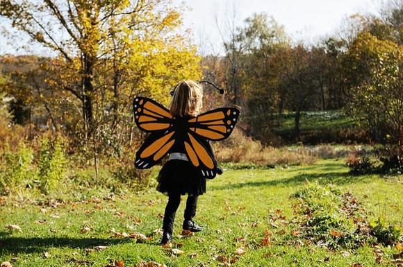 Como disfrazarse de mariposa