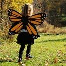 Disfraz de Mariposa hecho en casa