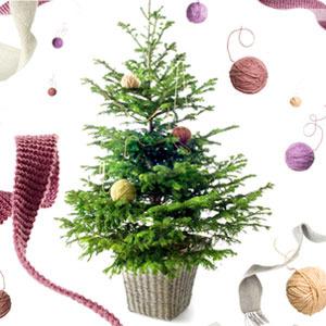 Adornos para navidad en Verdecora. Decoración navideña 2010
