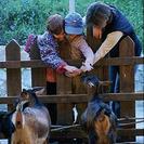 Campamentos de Semana Santa 2012 en Parques Reunidos