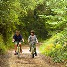 Excursión para niños con bici o en la sillita en Palma de Mallorca