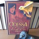 Odessa y el mundo secreto de los libros