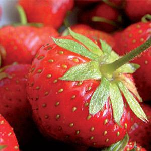 Bocaditos de fresas
