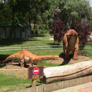 Dinosaurios interactivos para niños en el Zoo Aquarium de Madrid