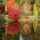 El otoño más espectacular en Finlandia