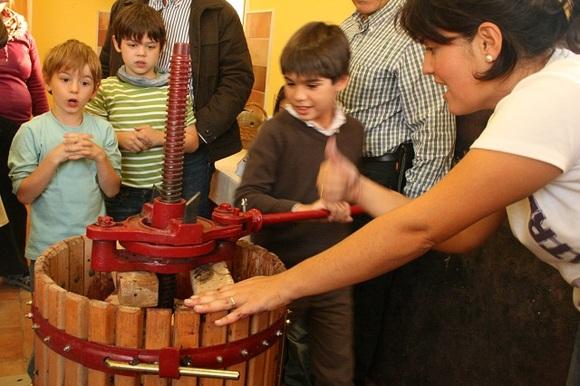 Aprende el proceso de la uva, actividad con niños