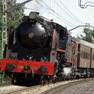 Especial Viajes en Tren Turístico