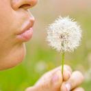 Maneras para prevenir las alergias