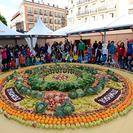 Zumosol celebra el Día Mundial del zumo