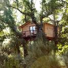 Dormir en los arboles en Extremadura