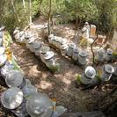 Museo de la miel y las abejas en Jerez